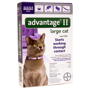 Large Dog Dosage Advantage For Cats