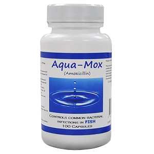 Aqua mox 250gm 100 capsules for Fish mox for cats