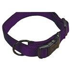 "Adjustable Dog Collar, Purple, 1"" x 18-26"""