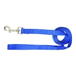 Nylon Lead, Single Thick w/ Swivel Snap & Loop, Blue, 6' x 5/8""