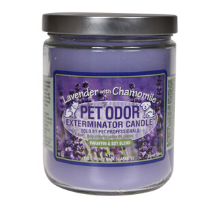 Pet Odor Exterminator Candle. Lavender with Chamomile