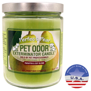Pet Odor Exterminator Candle, Perfect Pear