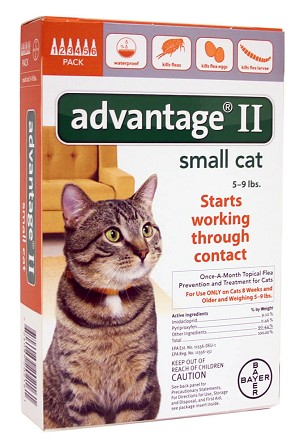 Advantage II Small Cat 5-9 lbs, 6 Pack Orange
