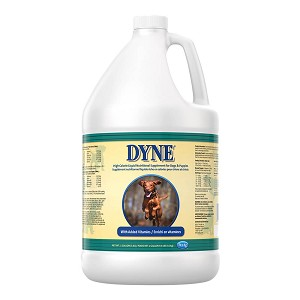 Dyne High Calorie Liquid for Dogs, 1 gal